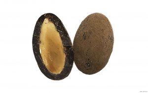 Mandeln in Zartbitterschokolade mit Kakaopulver aus Frankreich / Delice Cacao